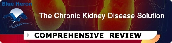 Chronic Kidney Disease Solution Plan
